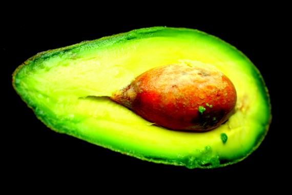 Avocado_5