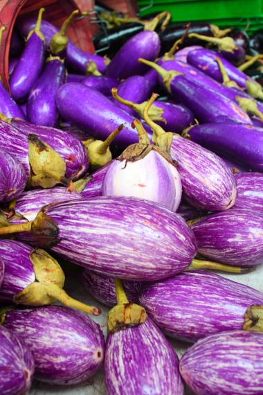 Eggplants_2