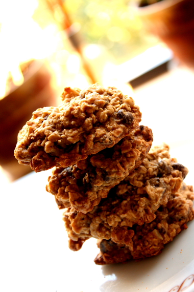 Oatmeal Cookies_5